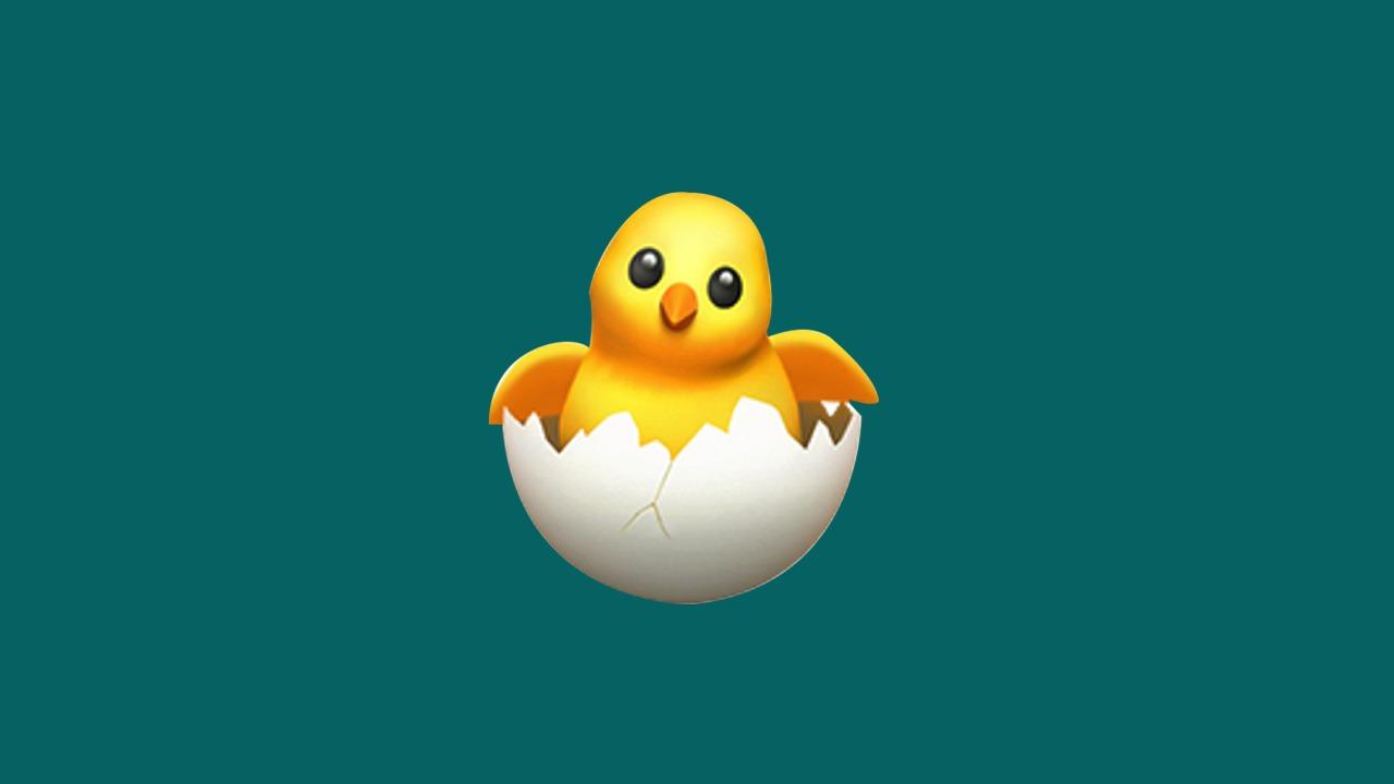 hatching-chick-emoji