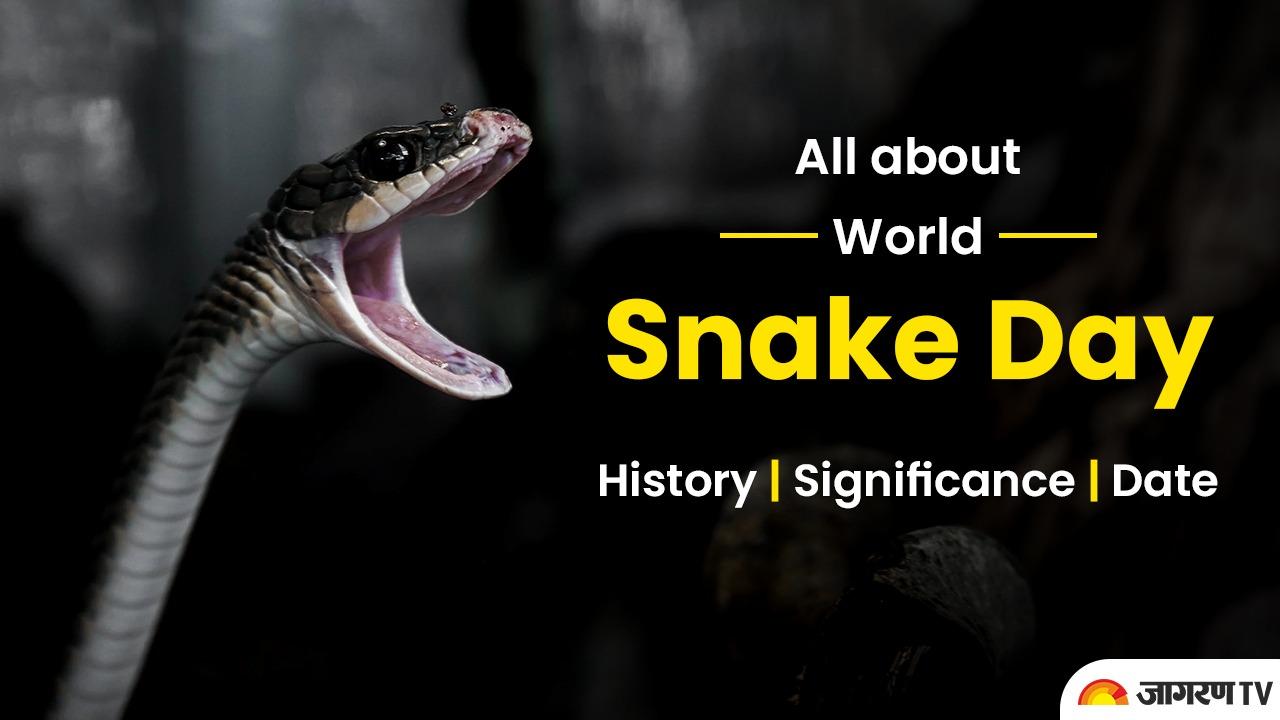 World Snake Day 2021: जानें क्यों मनाया जाता है सर्प दिवस, सांपो के बारे में कुछ रोचक तथ्य
