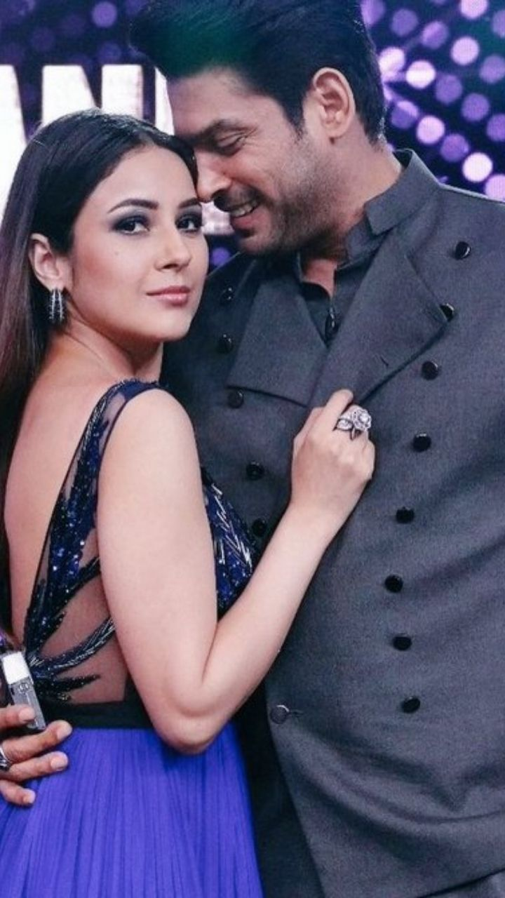 Celebrity Couples who found Love Inside Bigg Boss House