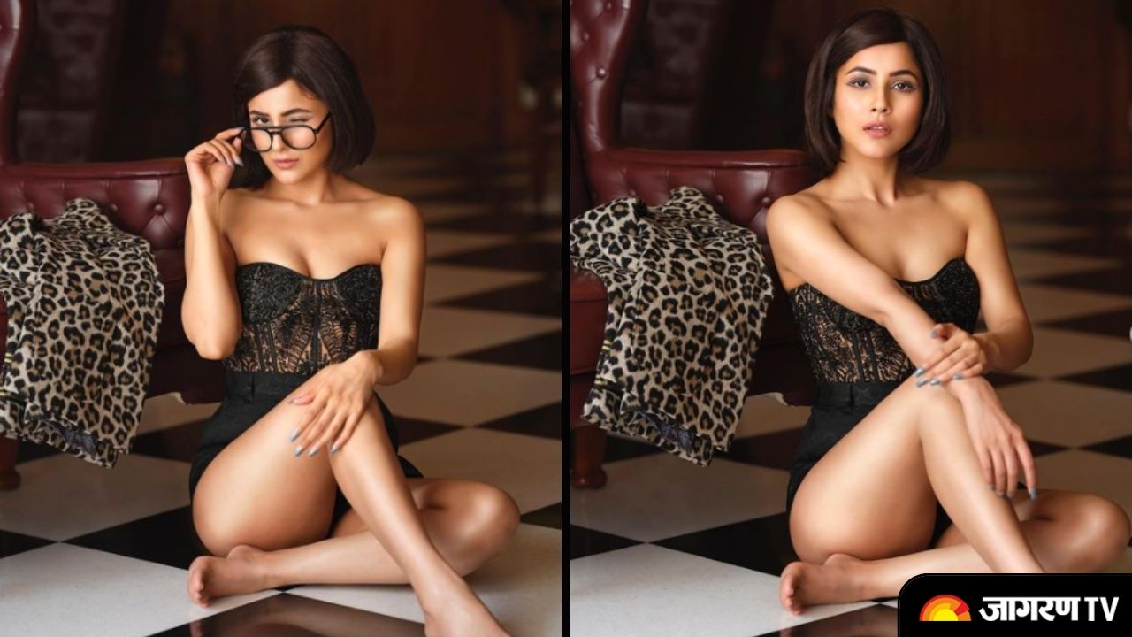 In Pics Shehnaaz Gill sets the internet on fire as she became muse for Daboo Ratnani