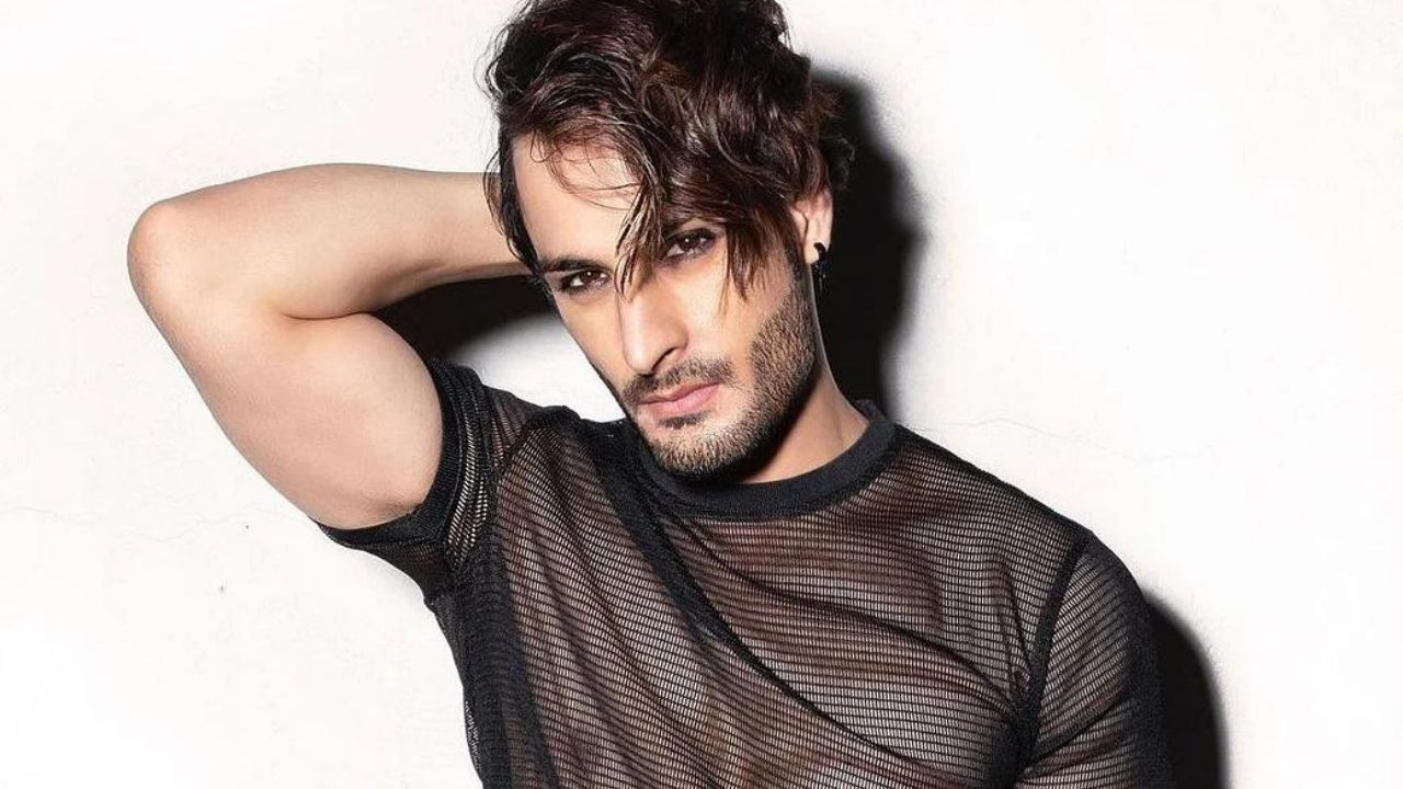 Umar Riaz Biography: Age, Early Life, Profession, Bigg Boss 15 Contestants, Family, Photo and News, asim riaz brother