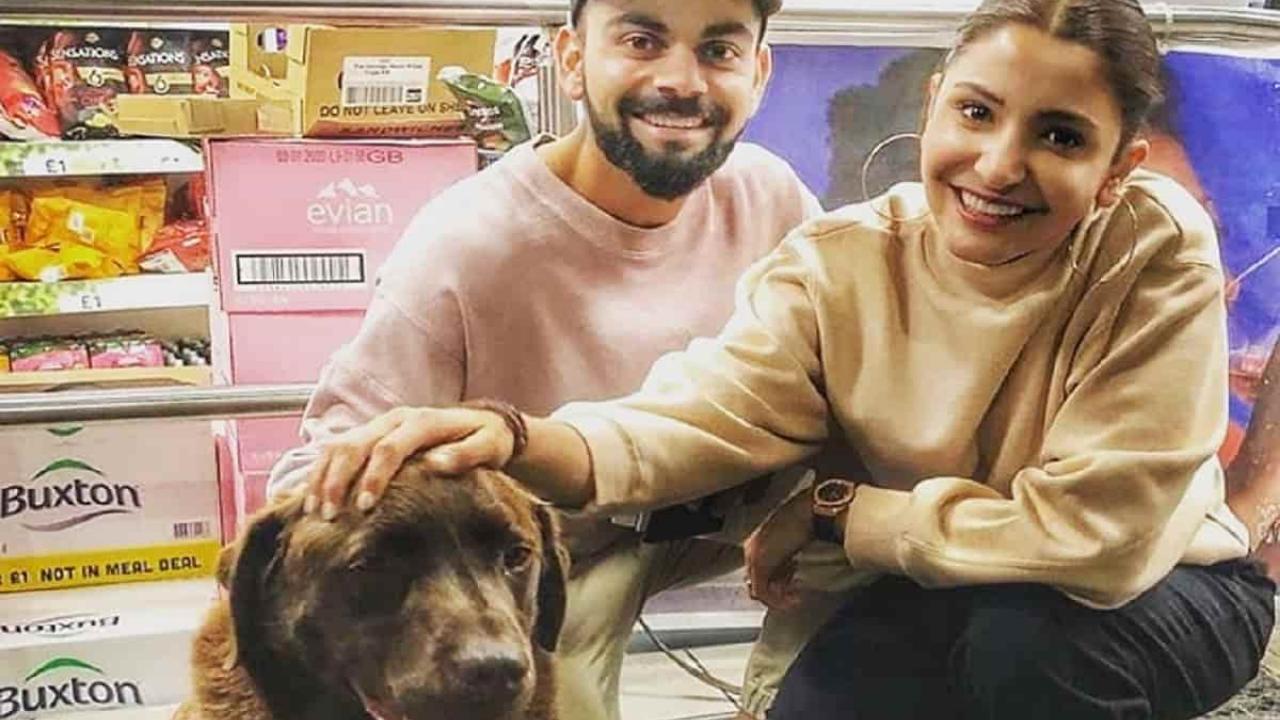 Virat Kohli & Anushka Sharma launches trauma & Rehab center for stray animals
